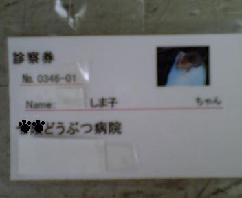 b0075127_1514610.jpg