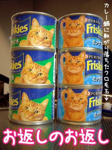 猫の恩返し?_c0062832_13532642.jpg