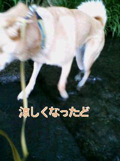 c0076933_183749100.jpg