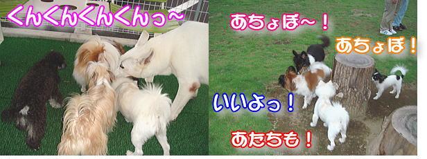 f0011845_0173299.jpg