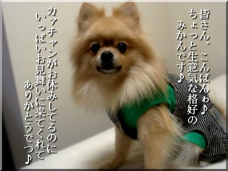 b0078073_22301968.jpg