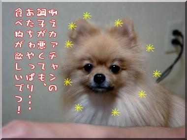 b0078073_22314440.jpg