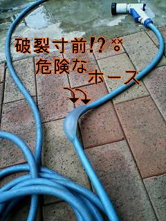c0076933_623513.jpg