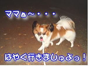 f0011845_23461451.jpg