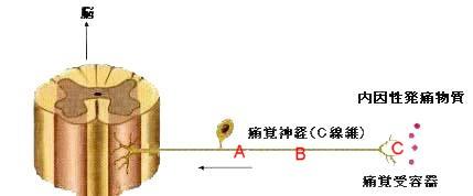 b0052170_19334384.jpg