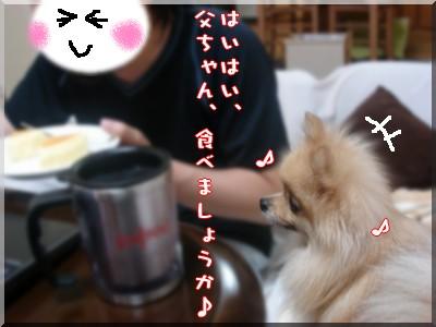 b0078073_092595.jpg