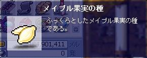 f0081059_10402323.jpg