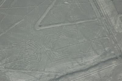 ナスカ地上絵の謎を解く鍵_b0062963_1043222.jpg