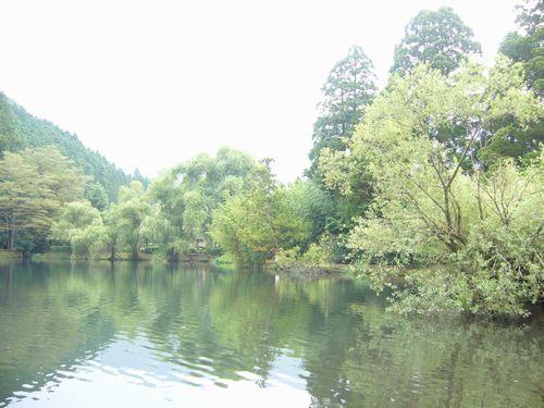 湯布院 亀の井別荘 優しい雨。。.゜。*.。♡_a0053662_9555777.jpg