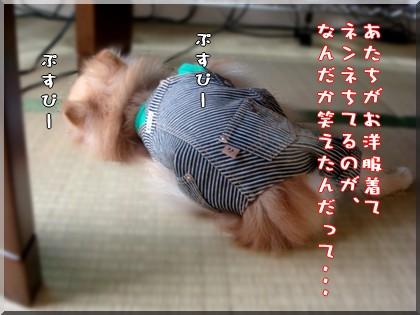 b0078073_0101337.jpg