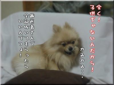 b0078073_0235423.jpg