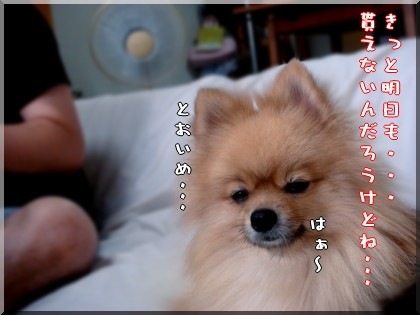 b0078073_0265981.jpg