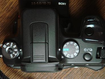 デジタル一眼レフカメラ_f0095094_233914.jpg