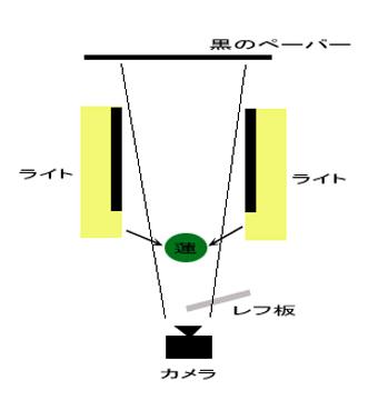 f0100215_1261783.jpg