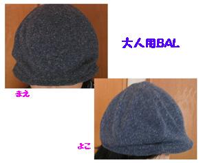 b0096533_1311519.jpg