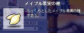 e0087434_1273547.jpg