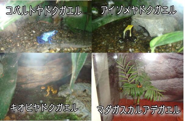 f0011845_0341063.jpg