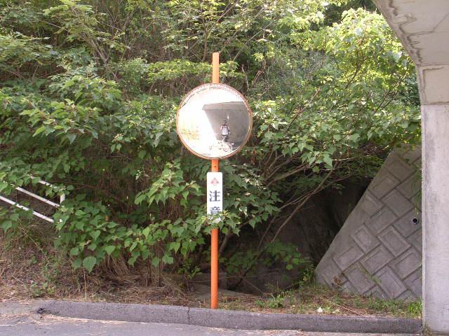 しまなみ海道旅日記4 (8月12日 因島へ)_c0092152_143493.jpg