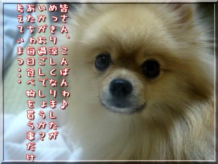 b0078073_22243826.jpg
