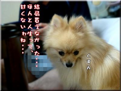 b0078073_22341333.jpg