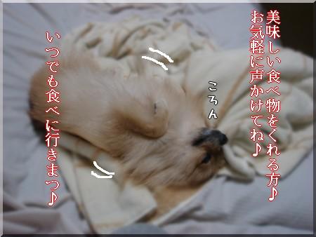 b0078073_22515917.jpg