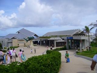 北国の女、南の島に行く その2 ~ミュージアム好きの美ら海水族館レポート_f0079085_1604842.jpg
