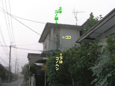 b0018017_16173887.jpg