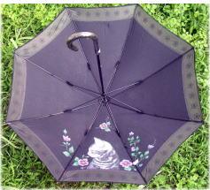 アメショーの傘とデカ猫ポーチ_b0105719_22241134.jpg