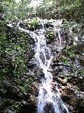 滝_f0099147_16444943.jpg