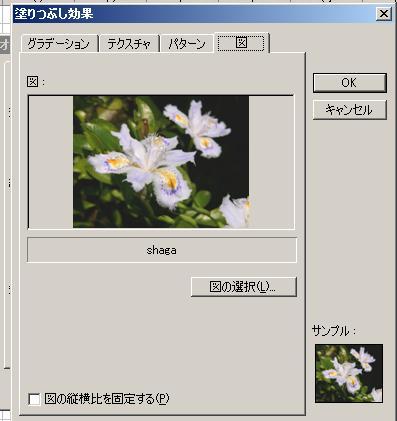 b0078675_032317.jpg