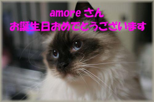 c0080002_645865.jpg