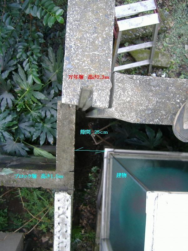 3本目 隙間25cmに潜り込み 刻み発見!_f0005428_1802020.jpg