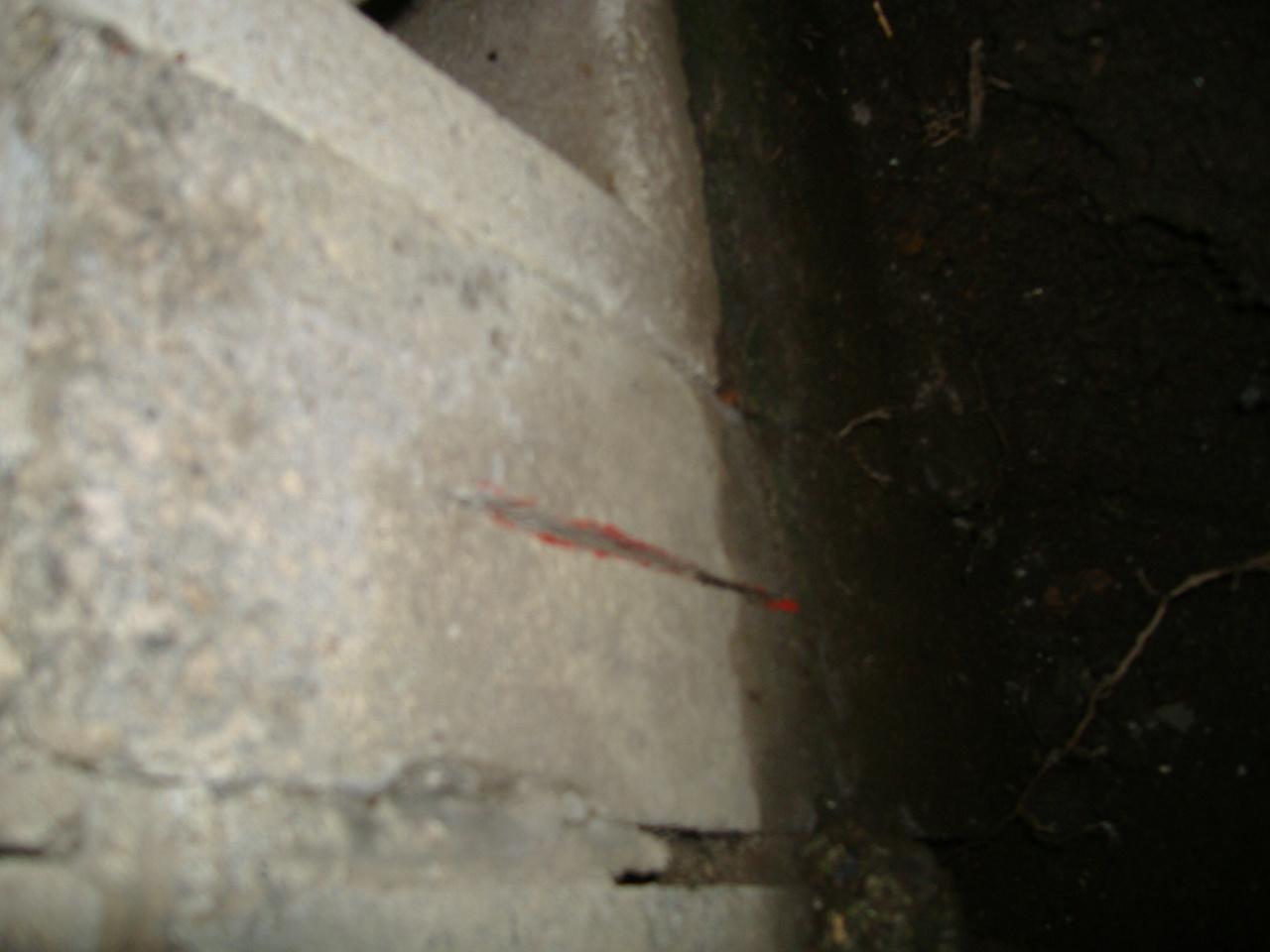 3本目 隙間25cmに潜り込み 刻み発見!_f0005428_1854820.jpg