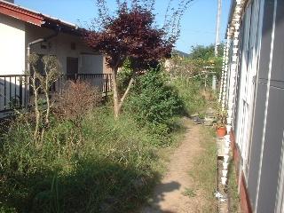 f0031037_16423486.jpg