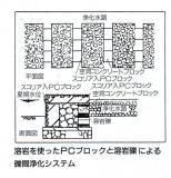 みしまの川 _c0087349_2036395.jpg