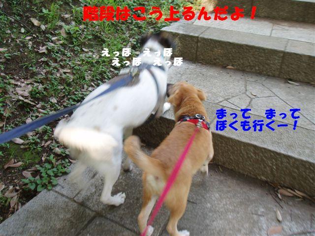 c0000189_14481171.jpg