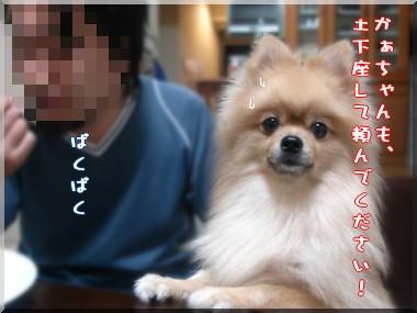 b0078073_1945459.jpg