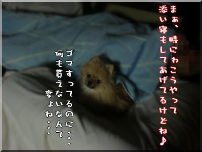 b0078073_19474210.jpg