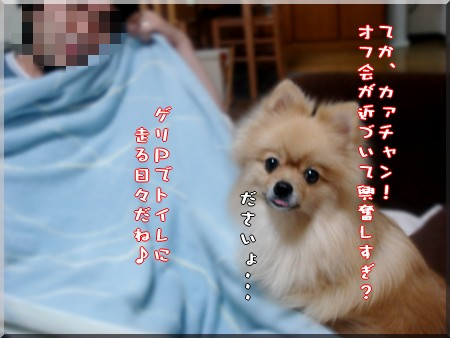 b0078073_19555830.jpg