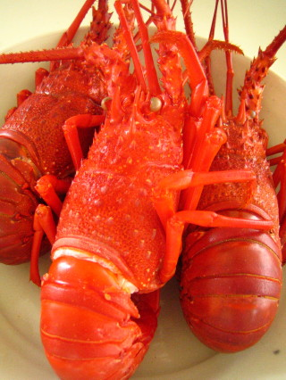 夏休みのお昼ごはん 伊勢えびの冷製トマトスープ_d0004651_10433346.jpg