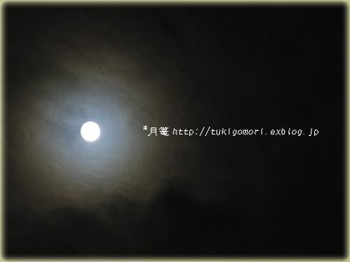 a0019967_2254470.jpg
