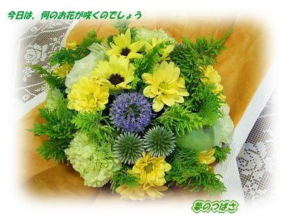 f0054187_11271.jpg