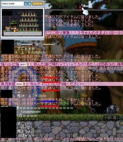 f0070197_283213.jpg