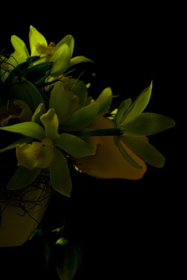 鏡の利用法_f0100215_1213939.jpg