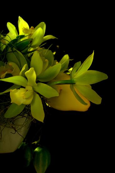 鏡の利用法_f0100215_1251626.jpg