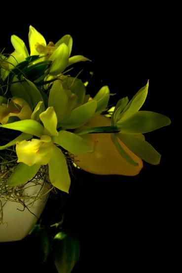 鏡の利用法_f0100215_1253388.jpg