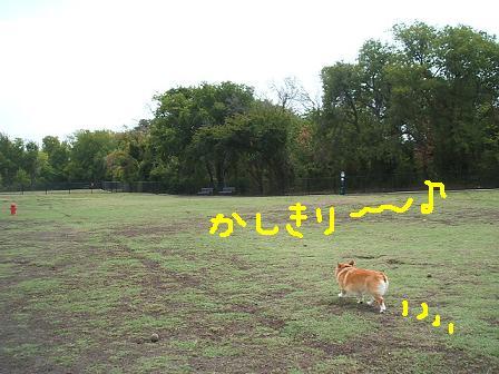e0014447_141159.jpg
