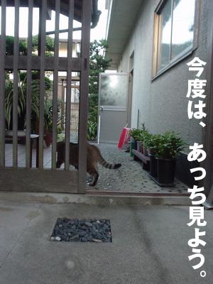 b0080632_23231959.jpg