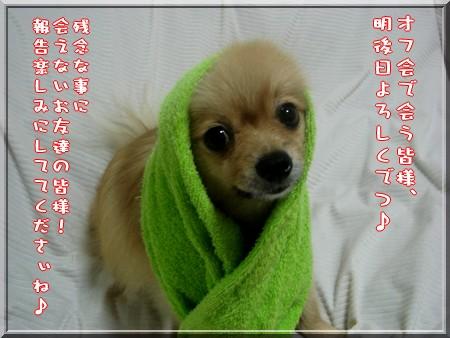 b0078073_048933.jpg