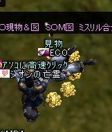 f0100787_1531250.jpg